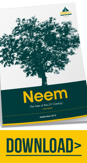 neem-banner-primal-group